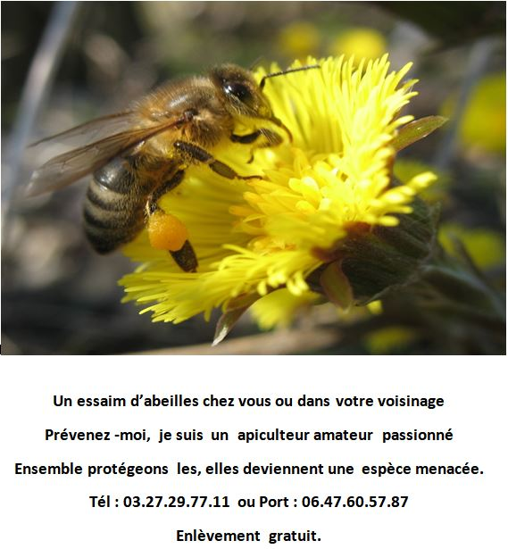 apiculteur 27